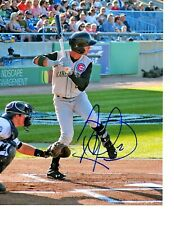Albert Almora Chicago Cubs top prospect hand signed auto 8x10 photo Kane County!