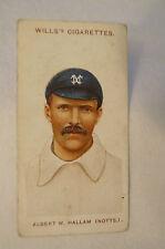 1908 Vintage Wills Cricket Card - Albert W. Hallam - Notts.
