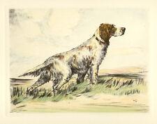 ENGLISH SETTER DOG GUNDOG FINE ART PRINT ENGRAVING by Ruben Ward Binks