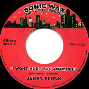 JERRY PLUNK I WONT HURT YOU ANYMORE Soul Northern Motown