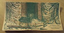 """1943 CALIFORNIA Travel SOUVENIR from """"TREES of MYSTERY"""" Redwood/Sequoia SEEDS~"""