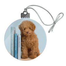 Poodle Puppy Dog Book Shelf Acrylic Christmas Tree Holiday Ornament