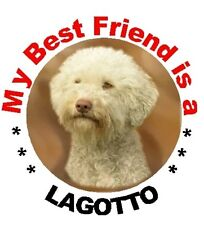 2 Lagotto MBF Round Car Stickers By Starprint
