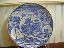 Vintage Porcelain Wisconsin Dells Plate