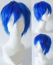Fairy Tail Jellal Fernandes Cosplay Wig for Sale