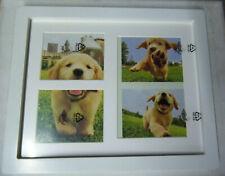 DOG or CAT PICTURE FRAME w/ KEEPSAKE PAW PRINT IMPRINT KIT BLUE CLAY uns nib