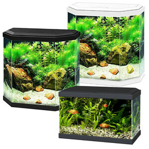 Ciano Aqua Aquarium 20 LED 30 Hex Lighting Hood Filter Beginner Fish Tank