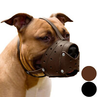 PitBull Dog Muzzle Pit Bull Secure Basket Genuine Leather Staffordshire Terrier