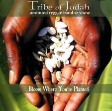Tribe of Judah Annointed Reggae Band & S : Bloom Where Your Planted CD