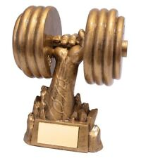 Resin Power Weightlifting Trophies Dumbbell Trophy Gym Award FREE Engraving