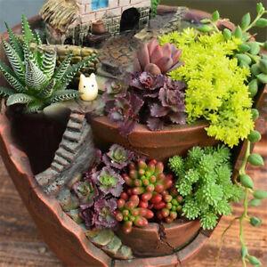 Herb Garden Sky Micro Landscape Flower Pots Succulent Plant House Basket Bonsai~