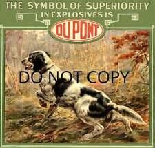 Antique Repro Photo Print Osthaus Dupont Powder English Setter Advertisement