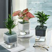 Home Garden Automatic Self Watering Succulent Plant Flower Pot PP Planter Decor