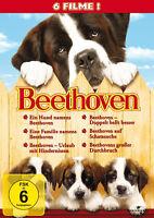 Ein Hund Namens Beethoven 1 + 2 + 3 + 4 + 5 + 6        | 6-Filme-Box | DVD | 270