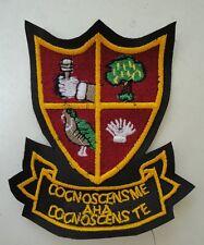Alan Partridge Blazer badges