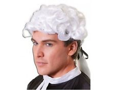Adults Judge High Court Hair Piece White Civil War Fancy Dress Powdered Wig