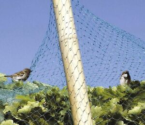 Filet vert anti-oiseaux Catral - Dimensions 6 x 4 m