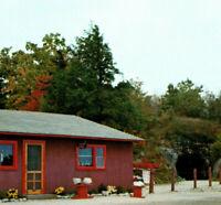 Ruggles Mine Gift Shop Building Mineral Display Grafton NH Vintage Postcard