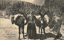 Les Pyrennes,France,Sur la Route Trois Amis,Peasant Woman & Pack Mules,Used,1905
