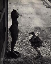 1959/72 Vintage 11x14 RENCONTRE TEXAS Goose Female Statue Photo By ANDRE KERTESZ