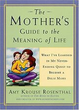Mothers Guide to the Meaning of Life: What Ive Learned in My Never-Ending Ques