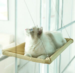 Cat Window Perch Safety Window Hammock Suction Cups For Cats Play Space Saving