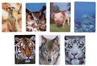 1 Kühlschrankmagnet Tiger Wolf Erdmann Eule Schwein Magnete 3D Magnet 11cm Tiere