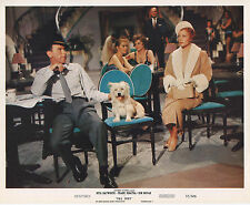 PAL JOEY photo FRANK SINATRA/RITA HAYWORTH original 1957 color publicity still