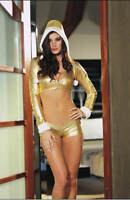Dreamgirl Holiday Diva Costume