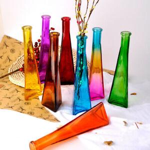 Color Clear Cone Flask Flower Plant Glass Vase Fish Tank Aquarium Home Decor