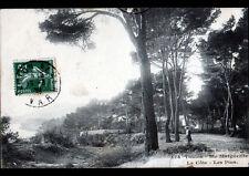 TOULON / SAINTE-MARGUERITE (83) COTE & PINS animés en 1908
