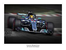 Lewis Hamilton 2017 F1 CAMPIONE DEL MONDO STAMPA ARTISTICA DIGITALE