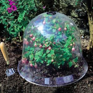 Garden Cloche Dome Plant Bell Plant Covers Garden Decor Plant Protector CovAU