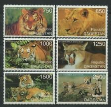 Lions Tigers Cheetahs Big Cats mnh set of 6 stamps Dagestan
