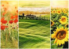 Trefl Romantic Puzzle 1000 Teile Sonnige Toskana (10410) Italien Blumen