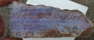 Andamooka Painted Lady opal display specimen lapidary collection T406