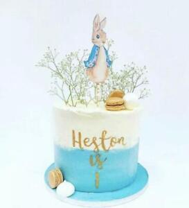 Peter Rabbit 6 inch Cake Topper Birthday