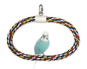 Aspen Pet Swing N Perch Ring  (Free Shipping In USA)