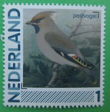 Nederland 2791-Aa-46 Pestvogel Birds Vogels Vögel 2011 Postfris
