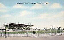 Mile High Kennel Club Track Denver Colorado Dog Races Old Vintage Linen Postcard