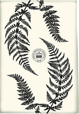 Kew Gardens Black Fern 100% cotton tea towel with hanging tape 70 x 50 cm