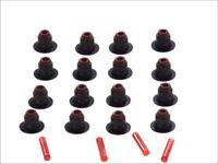 Elring Valve Stem Seal Kit BMW E53 X5 E63 E65 E70 X5 E71 X6 E87 E90 N42 N46 N62