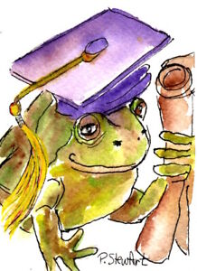 ACEO Frog Graduate with diploma WC + pen Illustration Naive Art Penny StewArt