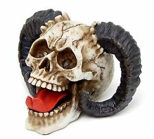 Realistic Human Skull Life Size Replica Gothic Halloween Decoration 1 Size Horn