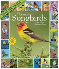 Audubon Songbirds and Other Backyard Birds Picture-A-Day Wall Calendar 2021 (Cal
