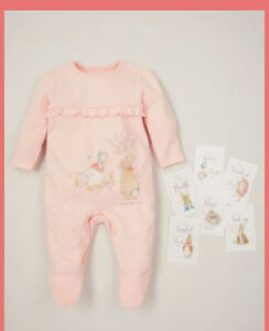 Jemima Puddle Duck And Flopsy Sleepsuit 6 Memory Cards Beatrix Potter Character