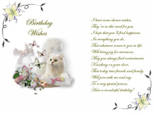 30.. cute Cat  verse inserts  for A6 cards  NEW DESIGN