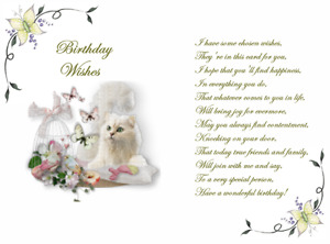15 x cute Cat  verse inserts  for A5 cards  NEW DESIGN