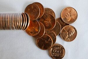 ROLL 1955 D Lincoln Wheat One Cent Uncirculated 50 1c Coins Less than Perfect