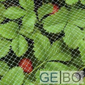 Erdbeerschutznetz Erdbeeren Schutz Netz 1x10 Meter
